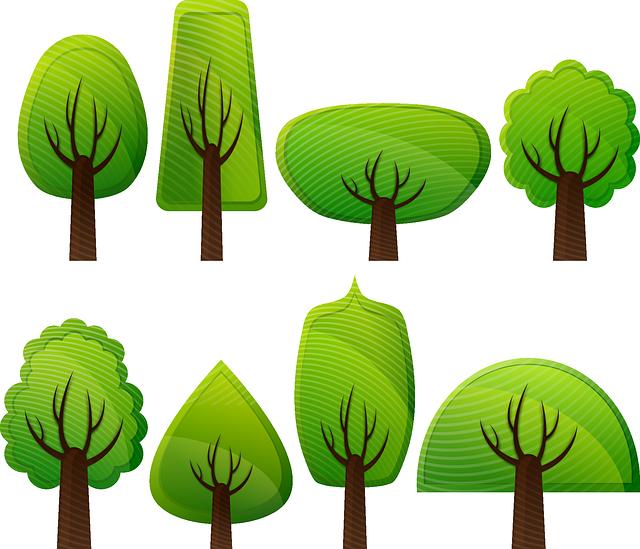 puuvartisten kasvien tunnistaminen